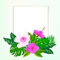 Square card with tropical decor Royalty Free Stock Photo