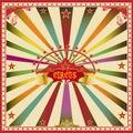 Square Circus Color Card.