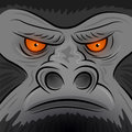 Square faced gorilla ape vector illustration Royalty Free Stock Photo