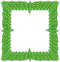 Square frame from green leaves Stock Images