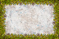 Square grass frame with copy-space on sand background Royalty Free Stock Photo