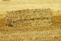Square hay bale on a field Stock Photography
