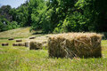 Square hay bales lay in a freshly mowed field Royalty Free Stock Photography