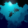 Square illustration of turtles in rays of water.