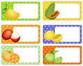 Square labels with tropical fruits Royalty Free Stock Photo