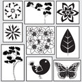Squares seamless black and white pattern consisting of with painted birds trees flowers butterflies Stock Photography