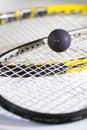 Squash Royalty Free Stock Photo