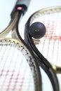 Squash Stock Photos