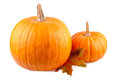 Squash with fall leaves Orange pumpkins isolated on white Royalty Free Stock Photo
