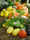 Squash and pumpkin next to flowers on hay Royalty Free Stock Photo