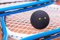 Squash rackets and ball close up of a Royalty Free Stock Photos