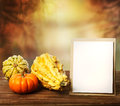 Squashes and greeting card on fall seasonal background Stock Photo