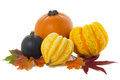 Squashes including pumpkin Royalty Free Stock Image