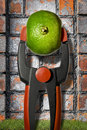 Squeeze the orange dry composition to with euro sign in middle Royalty Free Stock Images