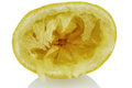 Squeezed lemon one of on a white background photo icon for taxes duties Royalty Free Stock Photography