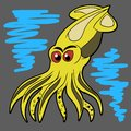 Squid. Vector Royalty Free Stock Photo