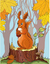 Squirrel with acorn in autumn forest