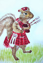 Squirrel Bagpiper Stock Images