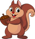 Squirrel cartoon with nut illustration of Royalty Free Stock Photo