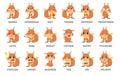 Squirrel emoji set.