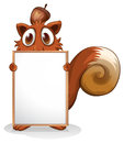 A squirrel with an empty whiteboard illustration of on white background Royalty Free Stock Photography