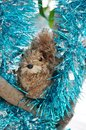 Squirrel holiday ornament in a christmas tree decorated with blue and silver garland Stock Image