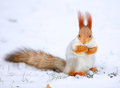 Squirrel sciurus vulgaris eating sunflower seeds on the snow Royalty Free Stock Photos