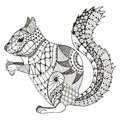 Squirrel zentangle stylized, vector, illustration, pattern, free