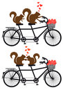 Squirrels in love on bicycle vector squirrel couple tandem with red hearts illustration Stock Image