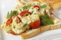 Srambled egg and tomato closeup scrambled on toast with cherry tomatoes parsley pepper cooking in a bain marie allows the tomatoes Royalty Free Stock Photo