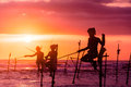 In Sri Lanka, a local fisherman is fishing in unique style in the evening Royalty Free Stock Photo