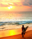 Sri Lanka surfing at sunset Royalty Free Stock Photo