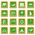 Sri Lanka travel icons set green