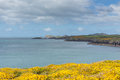 St brides bay wales coast path pembrokeshire uk near from caerfai to non s in the coast national park towards ramsey island Stock Photos