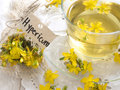 St john s wort tea in the glass cup with fresh flowers Royalty Free Stock Image