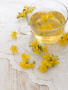 St john s wort tea herbal with flowers on white background Stock Photo