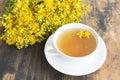 St. John`s Wort Tea Royalty Free Stock Photo