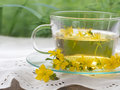 St john s wort tea on the table with fresh fllowers Royalty Free Stock Photos