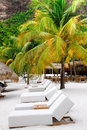 St. Lucia - Row of Lounge Chairs Royalty Free Stock Photography