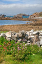 St martin s isles of scilly looking over a dry stone wall towards round island lighthouse martin's cornwall england Royalty Free Stock Images