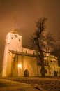 St Mary's Cathedral (Dome Church) on frosty misty night, Tallinn Royalty Free Stock Photo