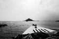 St michael s mount a black and white photo of the an island in the bay near the town of marazion cornwall england Stock Photo