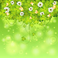 St patrick day frame with clover leaf gold coins and flowers vector illustration Royalty Free Stock Image