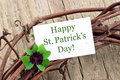 St patrick s day card with leafed clover Stock Images