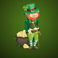 St. Patrick's Day. Leprechaun With Pot Of Gold. Royalty Free Stock Photos