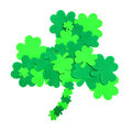 St Patrick's Day shamrock Royalty Free Stock Photography