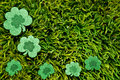 St patrick s day shamrocks on grass Royalty Free Stock Photo