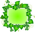 St. Patrick's Day Three Leafed Clover Frame Stock Image