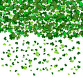St Patrick`s Day Vector background with shamrock. Lucky spring
