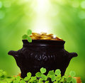 St patricks day background card with pot of coins Royalty Free Stock Photos